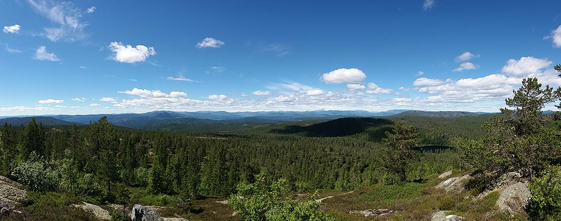 The vista from Springkaatfjell