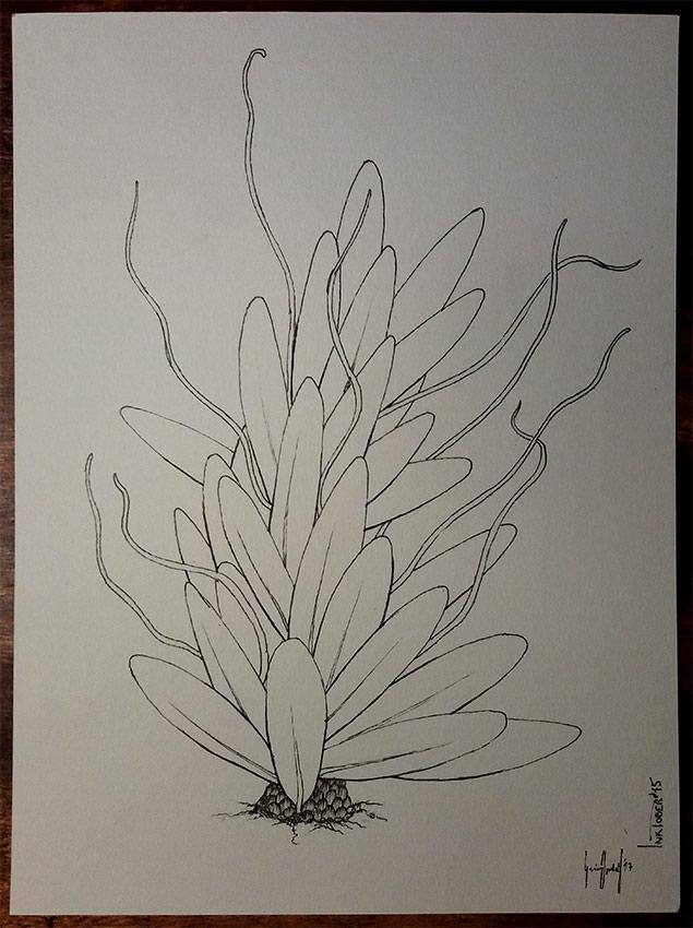 Inktober No 15