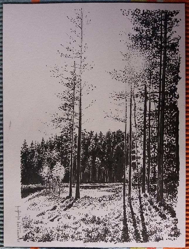 Inktober No 25